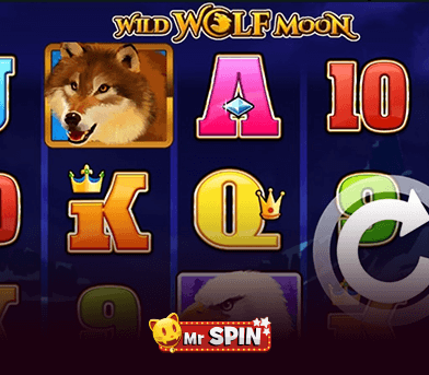 Elite Casino Events - Dog Strollers , Cheap Dog Strollers Slot